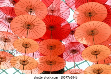 Bright colorful Chinese umbrellas. Open umbrellas with wood handles hanging from a ceiling