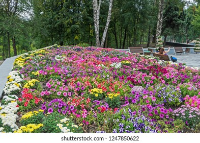 Bright and colorful flowerbed in the city park in early autumn