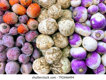 Bright colorful whole raw root vegetables in a farmer's market: rows of golden beets, red beets, celery roots, and turnips.