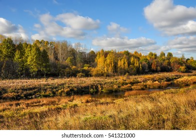Bright colors of Golden autumn in the countryside.