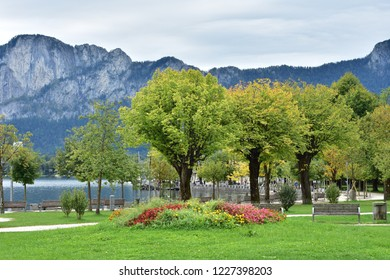 Bright colors of plants and flowers on shore of lake Attersee on cloudy day in early autumn.