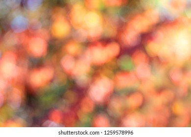 Bright and colourful defocused light for your Christmas background