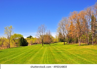 Bright day in park