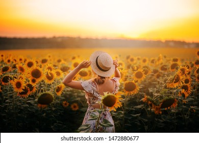bright delightful atmospheric photo, summer field of sunflowers, large yellow flowers and girl in light beige dress and straw boater, lady against hot sun, model from back, no face, free country life