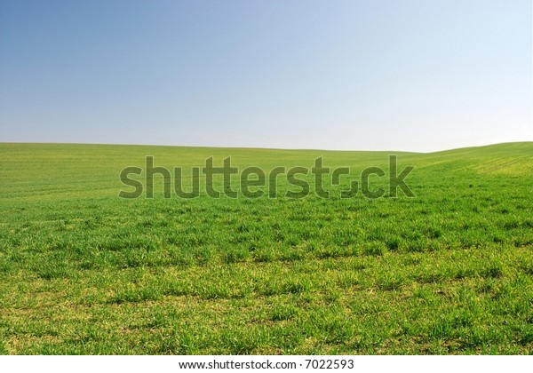 Bright empty green field with small hills