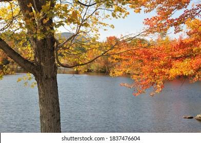 Bright fall foliage overlooking a lake in Washington, New Hampshire