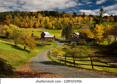 Bright Fall leaves around Sleepy Hollow Farm on Cloudland Road Woodstock, Vermont, United States - October 11, 2014