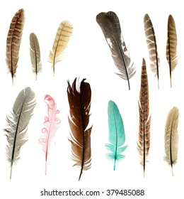 Bright feathers background