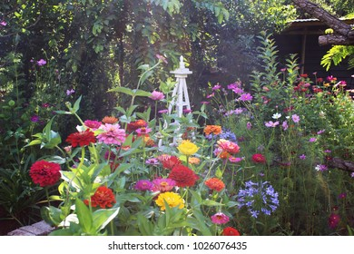 Bright flowers blooming in a spring garden