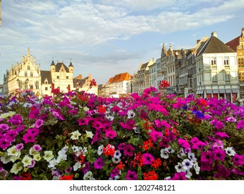 Bright flowers in the center of Mechelen