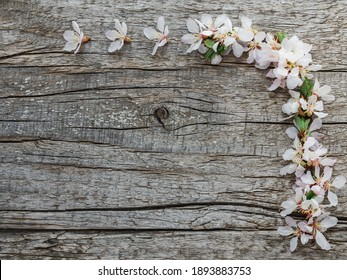 Bright flowers and a place for the inscription. Close-up, no people, texture. Congratulations for family, relatives, friends and colleagues