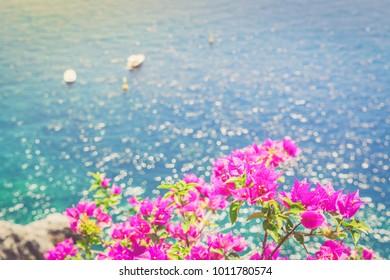Bright flowers and sea, Beautiful details of Amalfitana at summer, Amalfi coast Italy, retro toned