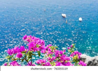 Bright flowers and sea, Beautiful details of Amalfitana at summer, Amalfi coast Italy