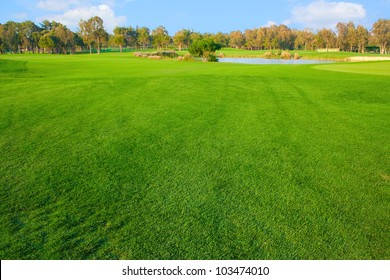 Bright grass of golf field