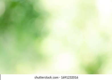 Bright green bokeh nature background