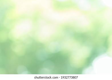 Bright green bokeh nature background