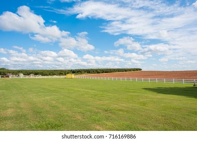 A bright green grassy field with a little yellow storage shed and an earthy farm land beyond. Bright blue sky with fluffy white clouds.