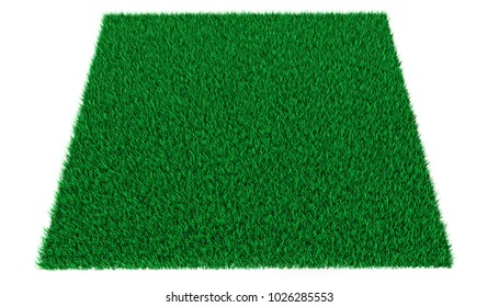 Bright green lawn on a white background. 3d illustration