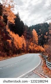 Bright grey street asphalt of a mountain road driving through autumn forest landscape. Okertal, Oker gorge, Oker National Park Harz, Harz Mountains, Germany