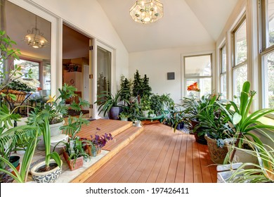 Bright home greenhouse with high vaulted ceiling and hardwood floor. Room full of plants and blooming flowers