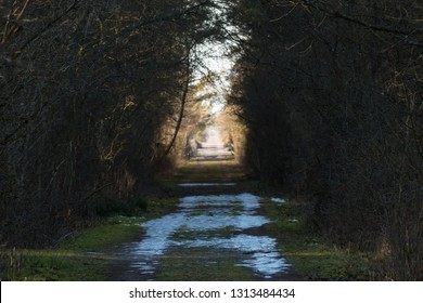 Bright hope with melting snow and light in a tunnel by a narrow country road