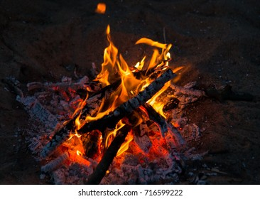 bright hot campfire on a dark southern night a halt of travelers bbq
