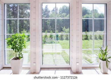 Bright interior of the room in a wooden house with a large window overlooking the summer courtyard. Summer landscape in white window. Home and garden concept. House plant Sansevieria trifasciata