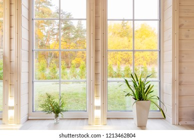 Bright interior of the room in wooden house with a large window overlooking the autumn courtyard. Golden autumn landscape in white window. Home and garden, fall concept. Plant Sansevieria trifasciata