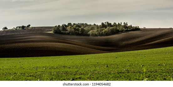 Bright landscape of green field and sunshine plowed dark ground on the slopes of Moravian land
