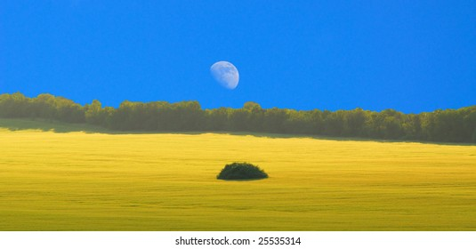 Bright landscape with  moon in the blue sky and  spring landscape