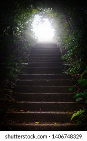 Bright light at the end of stairs through a dark, wooded tunnel