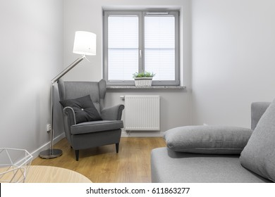 Bright living room with grey, upholstered armchair and sofa