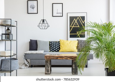 Bright living room interior with wooden table, simple, gray couch and black, industrial lamp