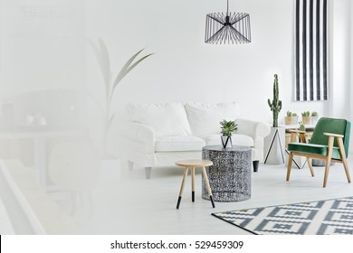 Bright living room with sofa, carpet and armchair