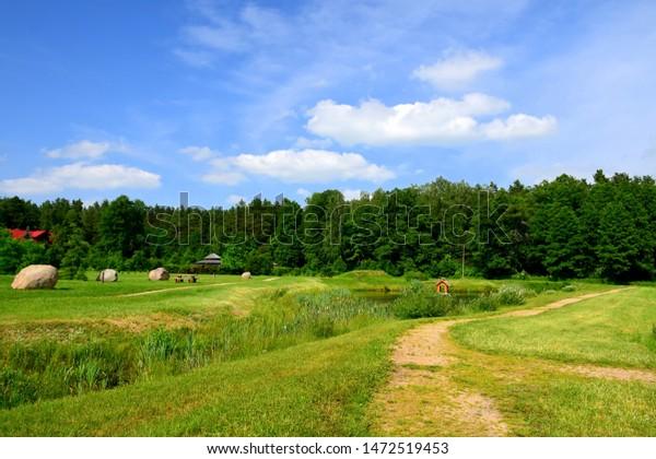 bright-lush-field-meadow-narrow-600w-147