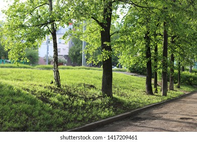 Bright and lush spring landscape in a city park in the city of Izhevsk, Udmurtia, Russia. Lush green grass and foliage on trees