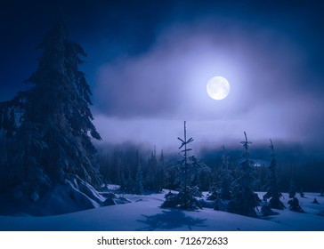 Bright moonlight in a mountain valley covered with fresh snow. Wonderful night landscape.