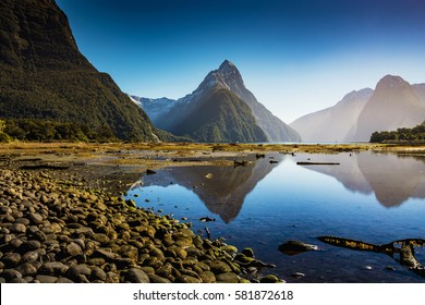 Bright Morning in Milford Sound, Fiordland National park, south island, New Zealand with a reflection of a famous Mitre peak and totally clear water and bright blue sky.