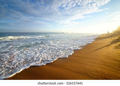 Bright morning on a sandy beach of the ocean