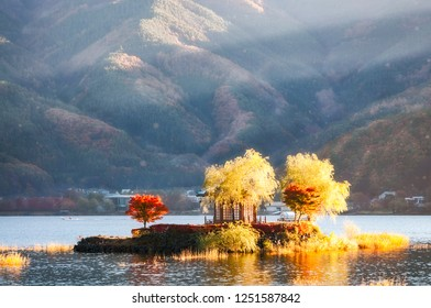 Bright morning sun on a small island at Lake Kawaguchi, one of the scenic Fuji Five Lakes in the northern foothills of Mount Fuji -Yagizaki Park, Fujikawaguchiko, Japan.