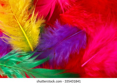 Bright multi-colored feathers background
