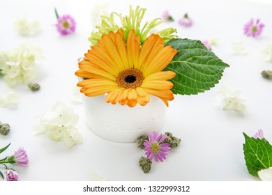 Bright Orange Gerbera Daisy Floral Arrangement in Ceramic Dish with Words Baked with Cannabis Buds and Marijuana Nug