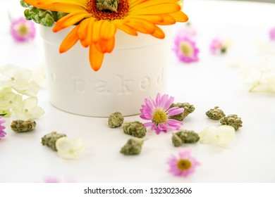 Bright Orange Gerbera Daisy Floral Arrangement in Ceramic Dish with Words Baked with Cannabis Buds and Marijuana Nug on White Table - Close Up