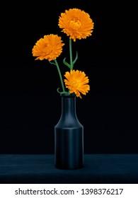 Bright orange marigold flowers, Calendula officinalis, against deep blue background. Edible medicinal herb. Still life in dark vase.