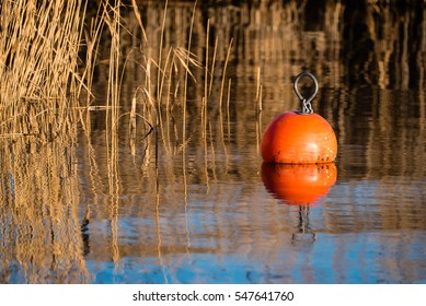 Bright orange mooring buoy in windless seawater with reed bed in background.