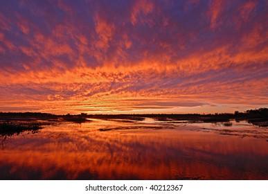 Bright orange sunset sky reflect in marsh wetland in Louisiana