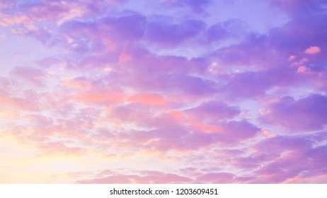 bright pink - blue colored sky at sunset. sunlight.