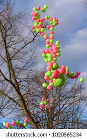 Bright pink and green balloons in a tree as 1st of May decoration at Esplanadi Park in Helsinki, Finland