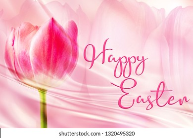 Bright pink tulip on a pale backdrop of tulips. Happy Easter quote. Great for social media campaigns.