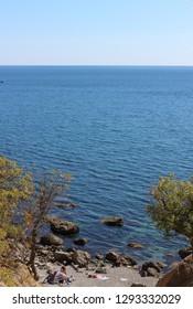 Bright and positive summer seascape with beautiful curved pines. Black Sea Coast of Crimea, Russia
